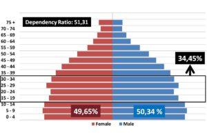 Bonus Demografi Terancam Gagal