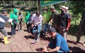 Dandim 0306/50 Kota Bersama Forkopinda 50 Kota dan Kota Payakumbuh Tanam Jagung