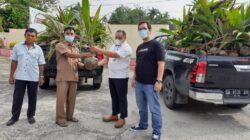 PT Semen Padang Bantu Petani Dharmasraya 1000 Bibit Pohon Kelapa